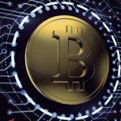 Крипторубль и криптоналоги: загнать медведя в берлогу?