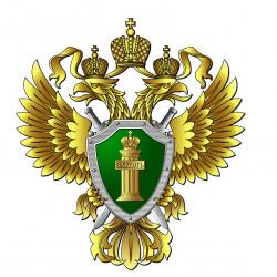 Итоги надзорной деятельности органов прокуратуры Приморского края в первом полугодии 2018 года