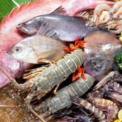 Рыбная контрабанда с китайской спецификой