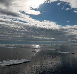Сможет ли российская Арктика реализовать свой большой рыболовный потенциал?