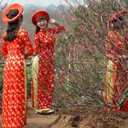 Миссия ао зай: как платье трансформировалось в культурный код для вьетнамцев