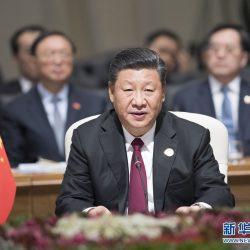 Си Цзиньпин призвал страны БРИКС углублять отношения стратегического партнерства