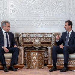 Россия будет и далее поддерживать борьбу сирийского правительства с терроризмом -- С. Шойгу