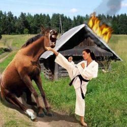 Женщина и власть: «А кони все скачут и скачут, а избы горят и горят…»