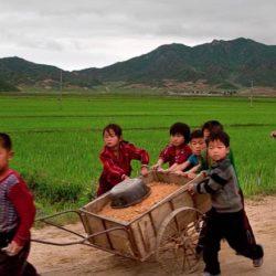 ООН: Северная Корея на грани голода