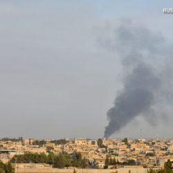 Сирия резко осудила турецкую военную операцию на севере страны