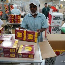 Шри-Ланка надеется значительно увеличить экспорт черного чая в Китай